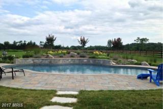 40235 Browns Creek Place, Leesburg, VA 20175 (#LO9853937) :: Pearson Smith Realty