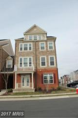 21168 Belmont View Terrace, Broadlands, VA 20148 (#LO9854162) :: Pearson Smith Realty