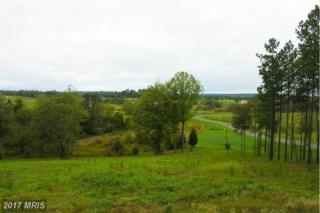 22469 Creighton Farms Drive, Leesburg, VA 20175 (#LO9855894) :: Pearson Smith Realty