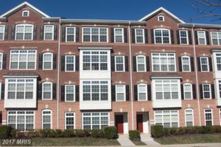 22810 Ferncrest Terrace, Ashburn, VA 20148 (#LO9855897) :: Pearson Smith Realty