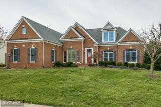 22570 Forest Manor Drive, Ashburn, VA 20148 (#LO9856556) :: Pearson Smith Realty