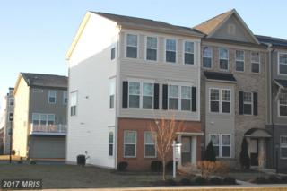43987 Eastgate View Drive, Chantilly, VA 20152 (#LO9857739) :: LoCoMusings