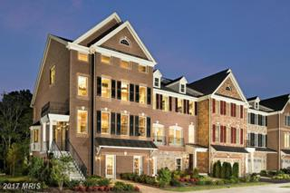 42649 Lancaster Ridge Terrace, Chantilly, VA 20152 (#LO9858002) :: LoCoMusings