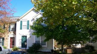 19958 Fieldgrass Square, Ashburn, VA 20147 (#LO9858261) :: LoCoMusings