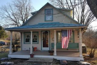 39933 Catoctin Ridge Street, Paeonian Springs, VA 20129 (#LO9858390) :: Pearson Smith Realty