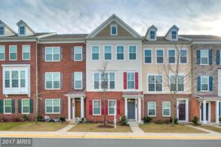 43575 Mckay Terrace, Chantilly, VA 20152 (#LO9858640) :: Pearson Smith Realty