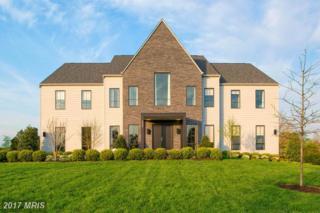 41195 Abbey Knoll Court, Ashburn, VA 20148 (#LO9858760) :: LoCoMusings