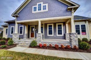 23533 Whiteheart Hickory Lane, Aldie, VA 20105 (#LO9858767) :: LoCoMusings