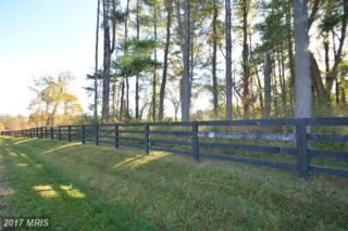21496 Rosedown Court, Middleburg, VA 20117 (#LO9859104) :: Pearson Smith Realty
