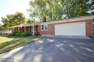 7 Longstreet Avenue, Round Hill, VA 20141 (#LO9862550) :: LoCoMusings