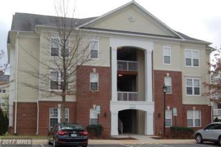 22655 Blue Elder Terrace #202, Ashburn, VA 20148 (#LO9862778) :: LoCoMusings