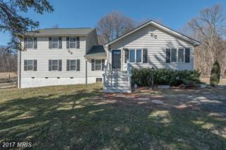 10939 Harpers Ferry Road, Purcellville, VA 20132 (#LO9863073) :: Pearson Smith Realty