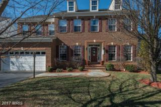 313 Old Dominion Lane, Purcellville, VA 20132 (#LO9863406) :: LoCoMusings