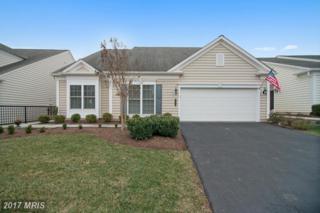 20647 Golden Ridge Drive, Ashburn, VA 20147 (#LO9864023) :: Pearson Smith Realty