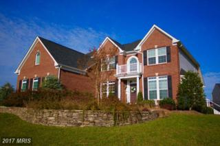 42426 Fawn Meadow Place, Chantilly, VA 20152 (#LO9864404) :: LoCoMusings