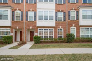 42527 Highgate Terrace, Ashburn, VA 20148 (#LO9865529) :: LoCoMusings