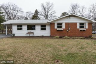 42160 Hiddenwood Lane, Aldie, VA 20105 (#LO9865851) :: Pearson Smith Realty