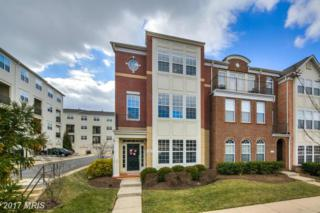 19360 Gardner View Square, Leesburg, VA 20176 (#LO9866045) :: Pearson Smith Realty