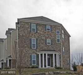 42442 Great Heron Square, Ashburn, VA 20148 (#LO9866118) :: LoCoMusings