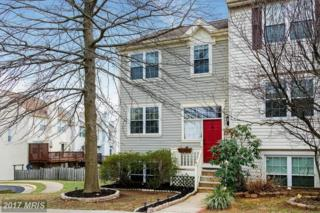 100 Newkirk Court, Purcellville, VA 20132 (#LO9866430) :: Pearson Smith Realty