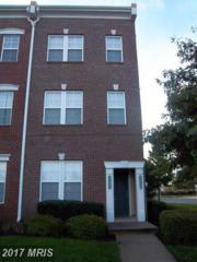 42401 Hollyhock Terrace #42401, Ashburn, VA 20148 (#LO9867386) :: LoCoMusings