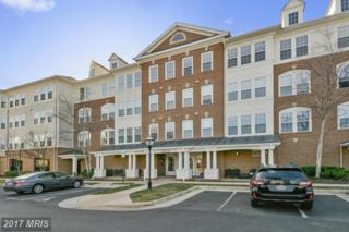 44465 Chamberlain Terrace #106, Ashburn, VA 20147 (#LO9867707) :: Pearson Smith Realty