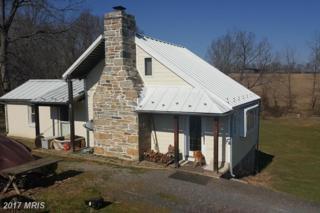 11305 Georges Mill Road, Lovettsville, VA 20180 (#LO9868130) :: LoCoMusings