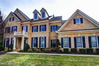 43271 Fieldsview Court, Leesburg, VA 20176 (#LO9868320) :: Pearson Smith Realty