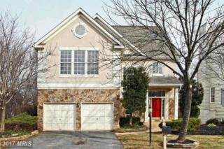 46290 Summerhill Place, Sterling, VA 20165 (#LO9868490) :: Pearson Smith Realty