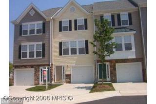 23014 Fontwell Square #602, Sterling, VA 20166 (#LO9869203) :: Pearson Smith Realty
