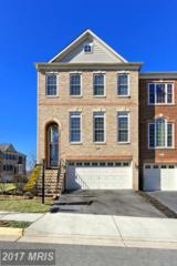 25519 Oak Medley Terrace, Aldie, VA 20105 (#LO9870378) :: LoCoMusings