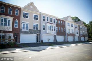 809 Savile Row Terrace, Purcellville, VA 20132 (#LO9870865) :: Pearson Smith Realty