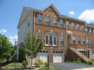 24686 Siltstone Square, Aldie, VA 20105 (#LO9870990) :: Pearson Smith Realty