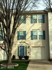 43218 Chokeberry Square, Ashburn, VA 20147 (#LO9871060) :: Pearson Smith Realty
