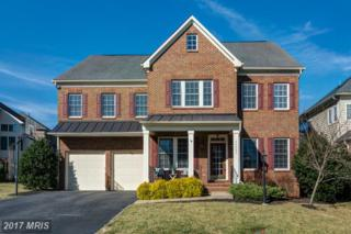 44060 Riverpoint Drive, Leesburg, VA 20176 (#LO9871193) :: Pearson Smith Realty