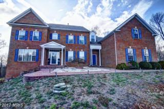 18140 Turnberry Drive, Round Hill, VA 20141 (#LO9871521) :: Pearson Smith Realty
