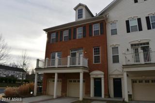 41947 Blue Flag Terrace #41947, Aldie, VA 20105 (#LO9872704) :: Pearson Smith Realty