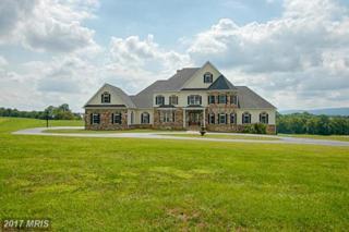 37861 Baker Mill Road, Purcellville, VA 20132 (#LO9874091) :: LoCoMusings