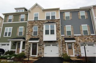 24908 Helms Terrace, Aldie, VA 20105 (#LO9874772) :: Pearson Smith Realty