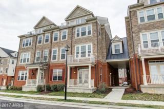 21178 Belmont View Terrace #21178, Broadlands, VA 20148 (#LO9875898) :: Pearson Smith Realty