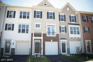 233 Miles Hawk Terrace, Purcellville, VA 20132 (#LO9876087) :: LoCoMusings