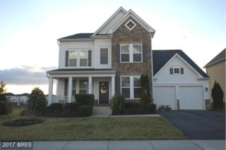 23455 Virginia Rose Place, Ashburn, VA 20148 (#LO9876723) :: LoCoMusings