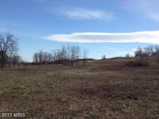18361 Turnberry Drive, Round Hill, VA 20141 (#LO9876727) :: LoCoMusings
