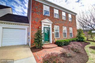20442 Brightcrest Terrace, Ashburn, VA 20147 (#LO9879058) :: LoCoMusings