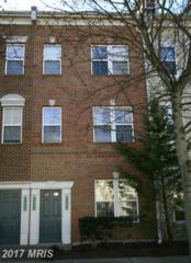 42530 Mayflower Terrace #42530, Ashburn, VA 20148 (#LO9879084) :: LoCoMusings