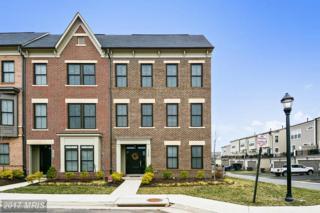 23558 Ashwood Moss Terrace, Ashburn, VA 20148 (#LO9882517) :: Pearson Smith Realty