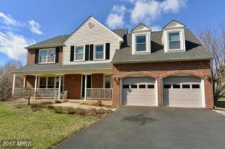 21767 Pinewood Court, Sterling, VA 20164 (#LO9884932) :: LoCoMusings