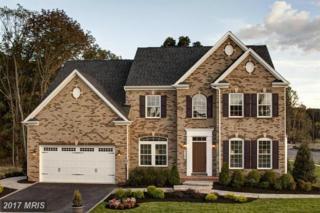 41533 Arlington Oaks Drive, Aldie, VA 20105 (#LO9885518) :: Pearson Smith Realty