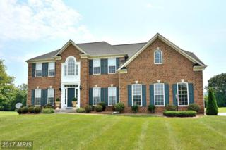 39315 Karlino Court, Hamilton, VA 20158 (#LO9885694) :: Pearson Smith Realty