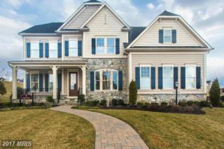 26604 Marbury Estates Drive, Chantilly, VA 20152 (#LO9885774) :: Robyn Burdett Real Estate Group